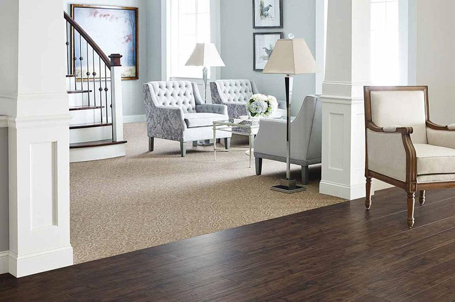 Dark brown hardwood meeting light brown carpet
