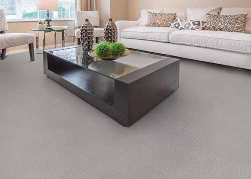 Image example of nylon carpet
